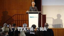 IMF đề nghị tạo lập 'quỹ dự phòng' ở Eurozone