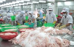 Hoa Kỳ áp thuế chống bán phá giá cá tra: Có thể kiện lên tòa án quốc tế