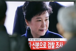 Sẽ phát sóng trực tiếp phiên tòa xét xử cựu Tổng thống Park Geun-hye
