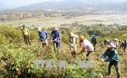 Lai Châu chủ động phòng chống cháy rừng mùa nắng nóng