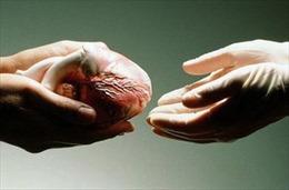 Một bệnh nhân hiến tạng cứu người sau khi chết não