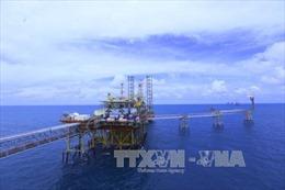 PVN đối mặt với sức ép giảm giá dịch vụ dầu khí