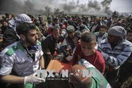 Tội ác chiến tranh ở Gaza có thể bị truy tố