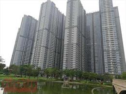 Nhiều sàn giao dịch bất động sản phải ngừng hoạt động do dịch COVID-19