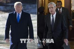 Mỹ: Nghị sỹ lưỡng đảng đề xuất dự luật bảo vệ công tố viên đặc biệt R.Mueller