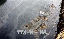 Thái Bình: Gần 2.000 người dân khổ sở vì 'sông đen' Đoan Túc