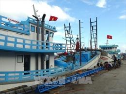 Bất cập khi triển khai Nghị định 67: Ngân hàng khởi kiện ngư dân