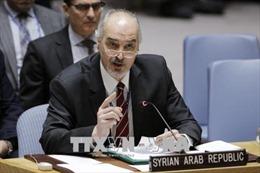 Hai nhóm chuyên gia OPCW tới Syria điều tra liệu có vụ tấn công thị trấn Douma hay không