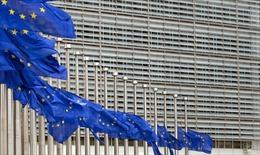 EU gia hạn trừng phạt đối với Syria thêm 1 năm