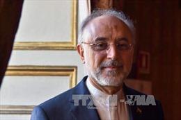 Iran tuyên bố Mỹ 'phá sản chính trị' khi tấn công Syria