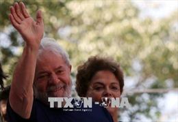 Cựu Tổng thống Brazil Lula da Silva đẫn đầu các cuộc thăm dò dư luận trước bầu cử tổng thống