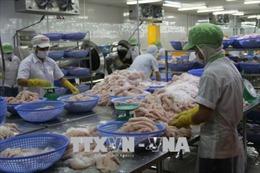 Thúc đẩy đưa hàng thủy sản sang thị trường Trung Quốc
