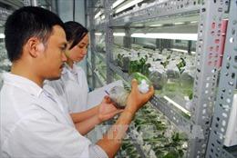 Cắt giảm 122 thủ tục hành chính trong lĩnh vực nông nghiệp