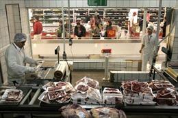 EU tạm ngừng nhập khẩu sản phẩm gia cầm của hàng chục nhà máy chế biến tại Brazil