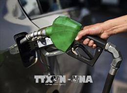 Giá dầu sụt giảm do hoạt động khoan dầu của Mỹ tăng