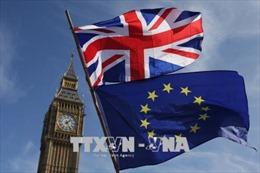 EU nhất trí gia hạn Brexit