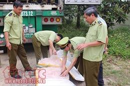 Xe container chở hơn 5 tấn nầm lợn bốc mùi hôi thối đi tiêu thụ