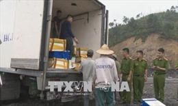 Quảng Ninh tiêu hủy hơn 3,5 tấn cá nhập lậu