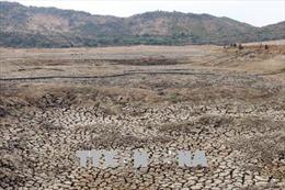 Thủ tướng yêu cầu nghiên cứu thông tin 'Việt Nam có trên 10 triệu ha đất đang có nguy cơ bị suy thoái'