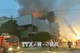 Sớm bố trí việc làm cho lao động Việt Nam bị mất việc làm do cháy xưởng tại Đài Loan