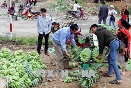 Hiệu quả từ mô hình kết nghĩa thôn bản biên giới Việt - Trung