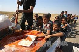 Hàng triệu trẻ em Iraq là nạn nhân của giao tranh và xung đột