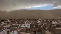 Bão cát kinh hoàng 'nuốt chửng' Tây Bắc Ấn Độ, hơn 80 người thiệt mạng