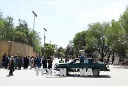 Afghanistan phá vỡ âm mưu tấn công liều chết vào tòa nhà chính phủ