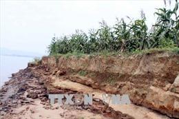 Sạt lở lớn tại xã Phú Hữu A, thiệt hại 150 triệu đồng