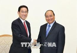 Thủ tướng tiếp trưởng ban Nghiên cứu Chính sách đảng Dân chủ Tự do Nhật Bản