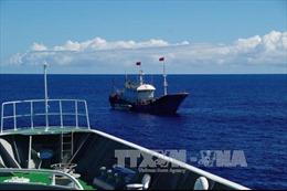 Argentina phạt tàu cá Trung Quốc 400.000 USD do đánh bắt trái phép