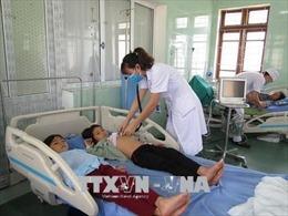 Quảng Ninh: 5 người ăn nhầm nấm độc