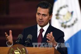 Mỹ điều tra tham nhũng đối với cựu Tổng thống Mexico Pena Nieto