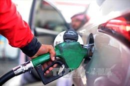 Giá dầu WTI tăng do dự trữ dầu thô của Mỹ giảm