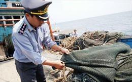 Phát hiện, xử phạt tàu giã cào tận diệt thủy sản vùng biển lộng Quảng Bình