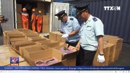 Hải Phòng phát hiện container lá Khát vận chuyển qua đường biển