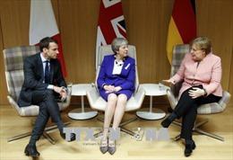 Châu Âu tìm cách bảo vệ lợi ích tại Iran
