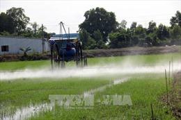 Bộ trưởng Nguyễn Xuân Cường: Phải giảm nhanh lượng thuốc bảo vệ thực vật độc hại