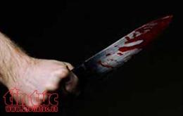 Bị nợ lương, lái xe giết giám đốc doanh nghiệp ở Hải Phòng