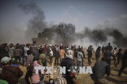 Pháp, Anh, Algeria lên án Israel sử dụng vũ lực đàn áp người biểu tình Palestine