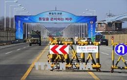 Triều Tiên dự định mở cửa thị trường du lịch, lập 14 đặc khu kinh tế