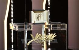 Phim Shoplifters của Nhật Bản giành giải Cành cọ Vàng tại LHP Cannes