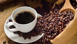 Việt Nam tham gia Hội chợ cà phê quốc tế tại Italy