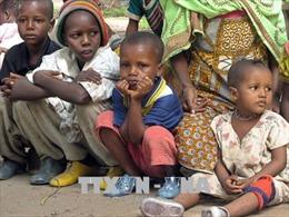 Giao tranh gia tăng, khoảng 7.000 người Trung Phi lánh nạn ở Congo
