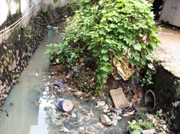 Để rác làm 'nghẹt' hệ thống thoát nước, 4 lãnh đạo phường bị phê bình