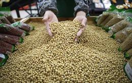 Những quốc gia 'chịu thiệt' khi Trung Quốc và Mỹ ngưng chiến tranh thương mại
