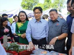 Phó Thủ tướng Vũ Đức Đam: Không thể có gia đình văn hóa lại đi làm thực phẩm bẩn