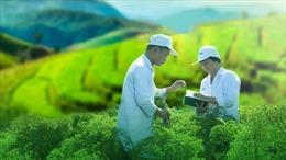 Khuyến khích doanh nghiệp công bố thông tin về sự phát triển bền vững