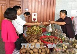 Hưng Yên kết nối cung cầu, xúc tiến tiêu thụ sản phẩm vùng nông thôn