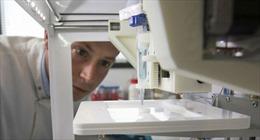 Ca ghép đầu tiên về giác mạc sử dụng tế bào gốc đa năng nhân tạo